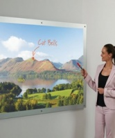 Projection Screen Whiteboards